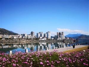 创建全国文明城市:我在青田,我接力!