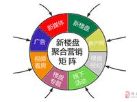 """2021陇南""""5G移动互联网+聚合营销""""新楼盘项目启动"""