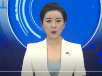 徽县江南商旅小镇综合体项目建成开业