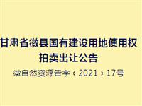 徽县1宗国有建设用地使用权公开拍卖