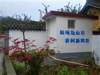 徽县榆树乡厕所革命成效显著