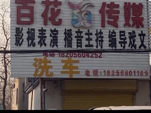 百花传媒影视