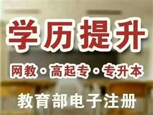 重庆自考本科_成人学历报考中心