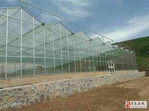 青岛玻璃智能温室大棚薄膜连栋温室大棚施工公司
