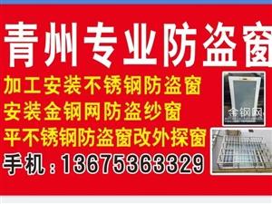 青州專業防盜窗