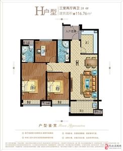 H户型 三室两厅两卫 116.76平