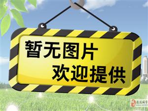 遂宁蓬溪碧桂园・天玺专题报道