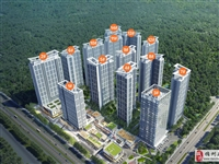 中南·智慧城