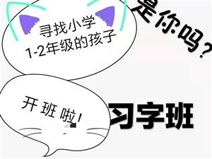 长阳佳一新教育0元习字火爆招生中