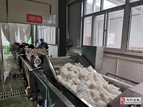 安康飞跃魔芋食品有限公司