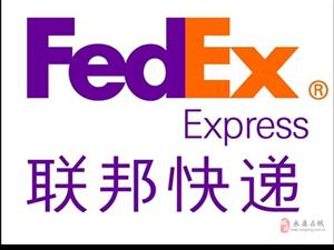 永义国际快递DHL,FEDEX,UPS,TNT