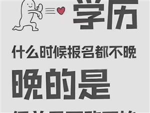 淄博成人高考函授专科本科学历提升咨询报名