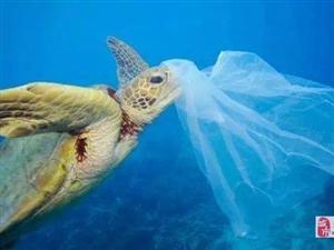 2021中国上海降解塑料及原料展