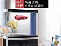 森森鱼缸出卖,现在1000元不讲 9层新