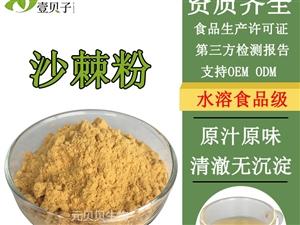 沙棘粉 速水溶沙棘提取物粉 食品级SC认证果蔬原料