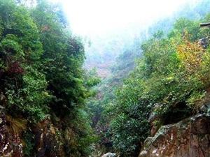 10余公里长的深山峡谷――大悟十八潭
