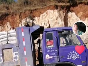 紫色康明斯单桥自卸车出售