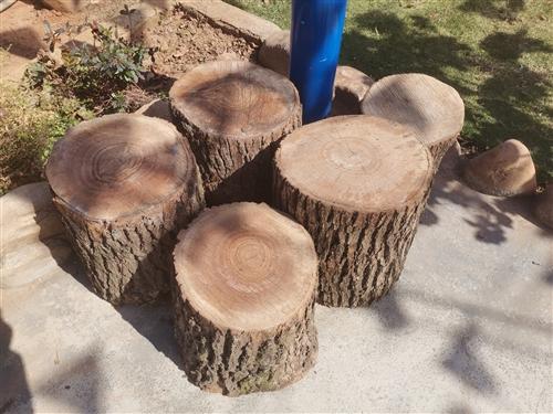 本人有直径30-40公分的香樟树筒出售。一级香,可以拿来做凳子。有意电联:13543238252