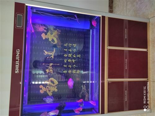 出售魚缸,尺寸長1200×寬420×高1560 閩江牌底濾缸,有明顯使用痕跡,頂蓋脫開不影響使用。...