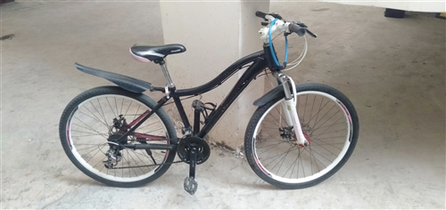 永久牌自行车一辆,十分好骑,十分轻,需要的速度