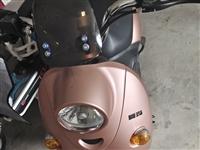 品牌电动车,爱玛摩托车式5个电瓶,基本没怎么骑,轮胎什么都是**的