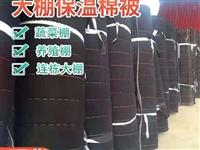 大棚保温棉被防雪防冻防雨淋厂价直销18262926408