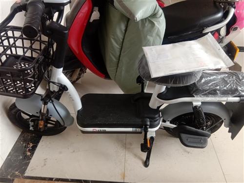 本人现有两辆电动自行车,一辆**品牌(未使用)绿驹电动自行车,发票都未开出,现予出售,买者可随时开发...