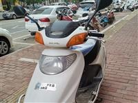 五羊本田摩托车转让,发动机很好,买到就是赚到。