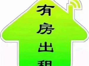 金�Q大�B1室 1�d 1�l5000元/月
