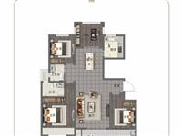 建业辰合学府3室 2厅 2卫60万元