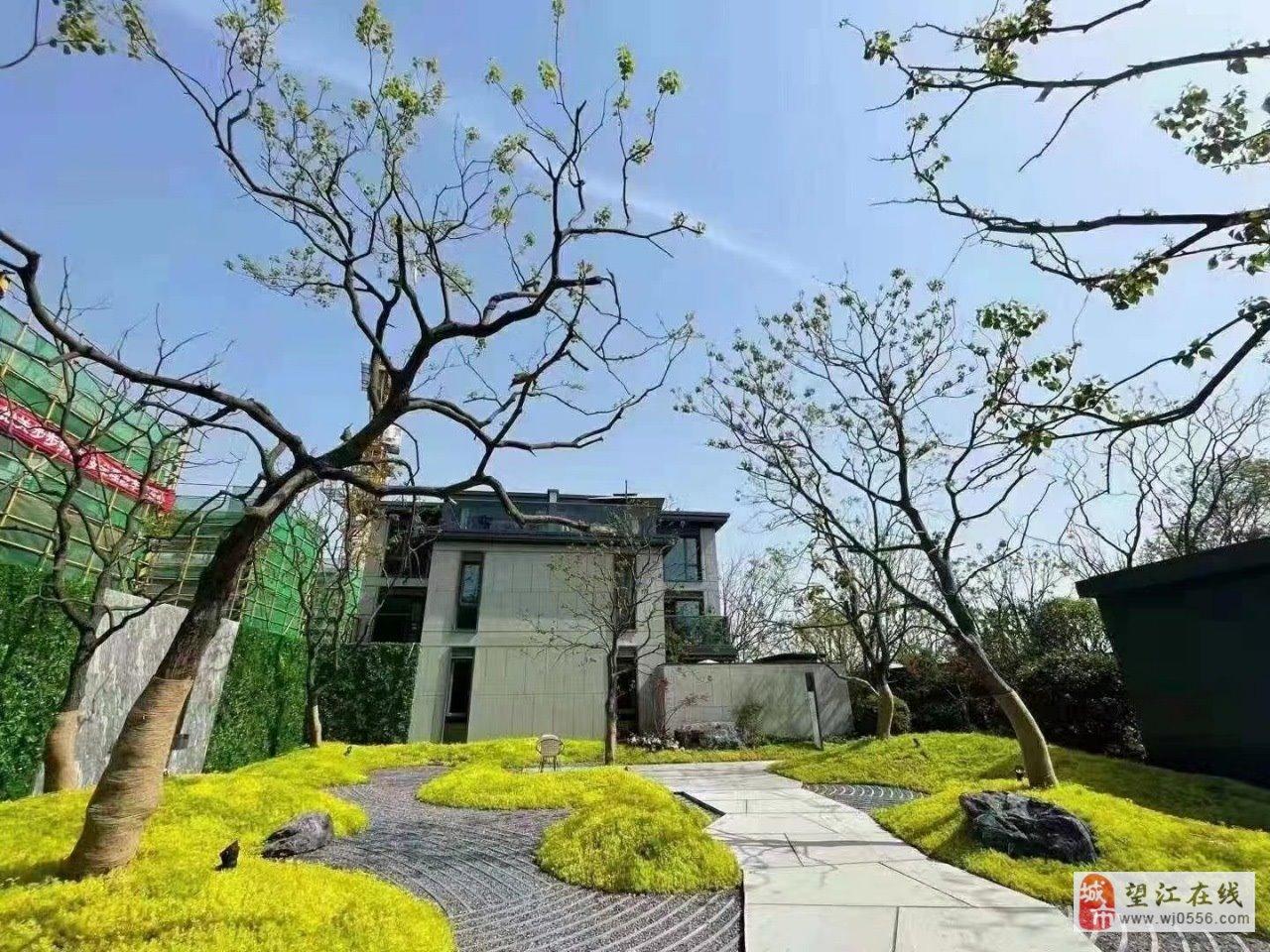 安家在合肥新滨湖孔雀城5室 2厅 2卫200万元