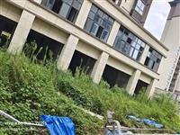 建业对面门面房,两间两层,低价出售
