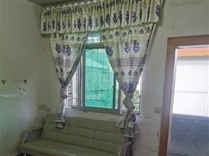 建设局院内2室 1厅 1卫600元/月