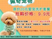 原价20元爱宠洗护套餐 抢购价格:9.9元【佩奇宠物】