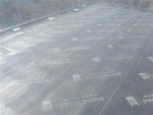 沾化区平房楼房专业防水