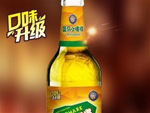 陕西蓝马啤酒有限公司