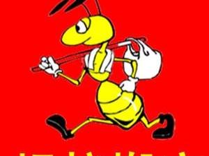 商河蚂蚁搬家服务中心