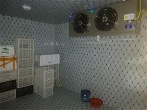 專業建冷庫