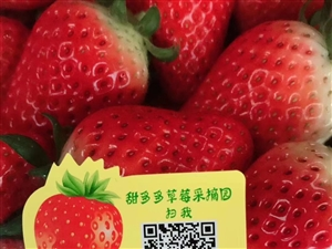 新鲜奶油草莓