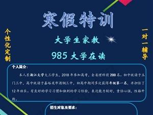 985大学生家教,寒假招生