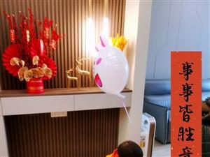招保姆--浦城人在上海