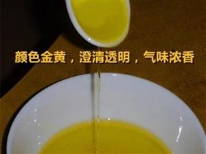 正宗纯天然茶油