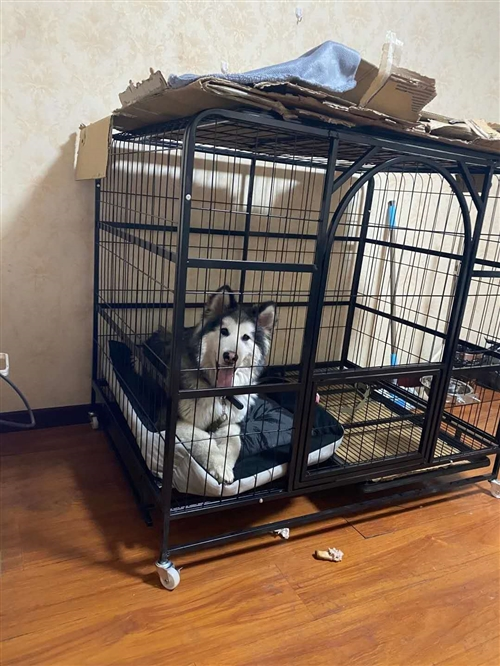 狗笼子出售