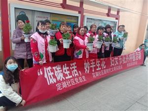"""定湖社区开展""""低碳生活,妙手生花""""妇女节花卉种植活动"""
