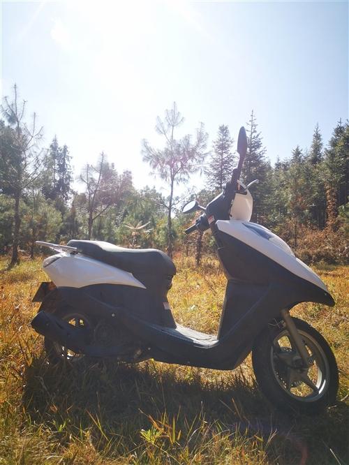 出售一輛踏板摩托,買了兩個月,因為閑置不用所以出售,價格實惠,聯系電話15393865464