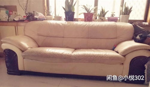 闲置沙发一套,是一二三组合的,真皮的,坐着软面舒服,只是表面有明显使用痕迹,现便宜处理,给钱就出,有...