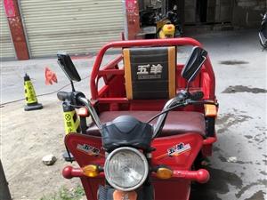 个人自用五羊牌电动三轮车,实际使用时间不是很长,实体店买了4000多,因为个人的原因闲置着,现在找一...