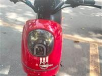 出售二手摩托车电动车,质量保证售后无忧。回收闲置电动摩托车,玉平车行。