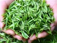 2021新春炒茶自产自销天然无污染,价格美丽,醇香味甘,批发零售95元500g,欢迎来信来电咨询