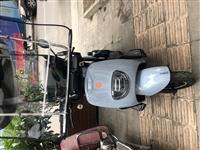 因本人外出,忍痛转让**电动三轮车,买了一周,原价5300,现价4500元,苍溪县城交易,可议价。